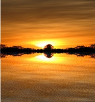 Attribution: http://www.flickr.com/photos/fdecomite/2079093742/